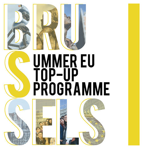 Summer EU Student Exchange: Top-up Programme Brussels 2014