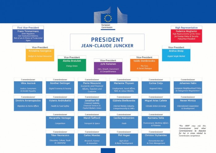 new Commission organigram